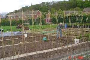Burhill Allotments
